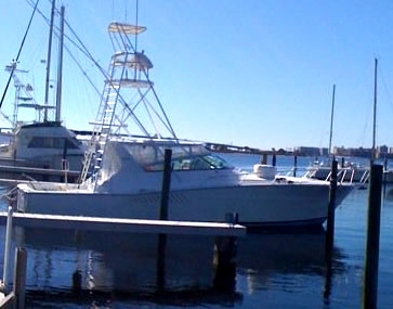 Optimistic Fishing Charters Orange Beach Al